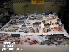 Цены на рыбу в Дубае