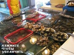 Пусан, рыбный рынок