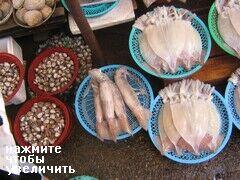 Знаменитый рыбный рынок в Пусане