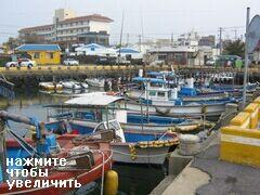 Рыболовные шхуны,Чеджу, Южная Корея, Могут организовать рыбалку