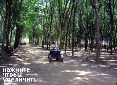 Квадроциклы на Пхукете
