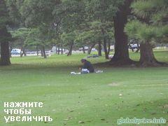 Парк возле императорского дворца в Токио