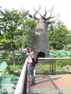 Парк Уено в Токио