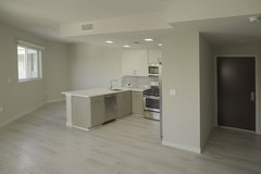 Rental housing in the USA, The kitchen is usually combined with the hall