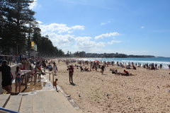 What to visit in Sydney, Manly Beach
