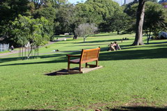 Sights of Sydney, Wentworth Park