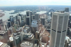 What to see in Sydney, Sydney Center from the TV tower